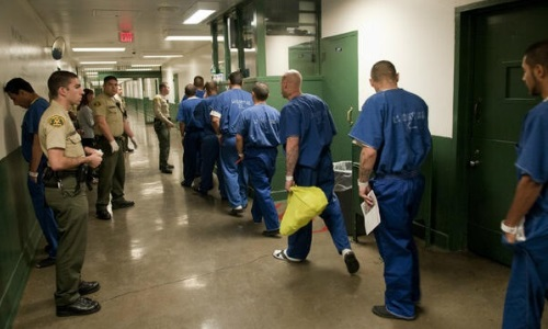 l a county jail inmate search