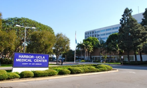 Picture of Harbor UCLA Medical Center