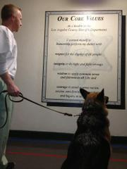 Custody Canine Program