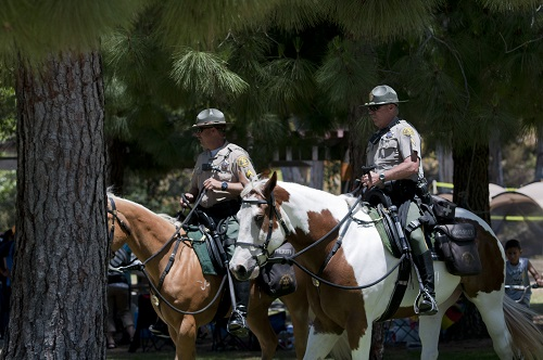 Mounted Enforcement Deputies