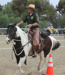 Mounted Enforcement Detail