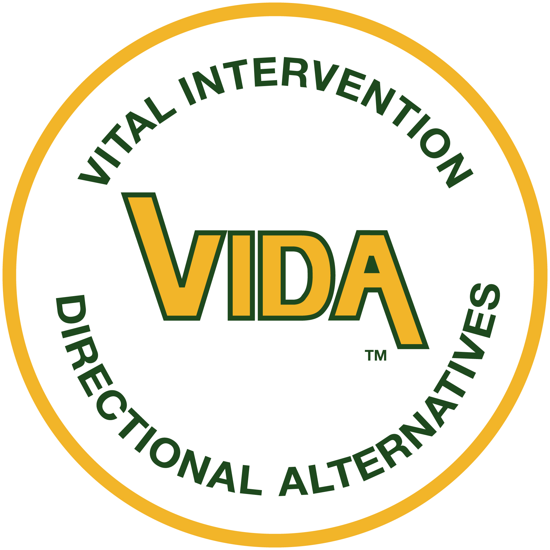 VIDA Logo (High Resolution)